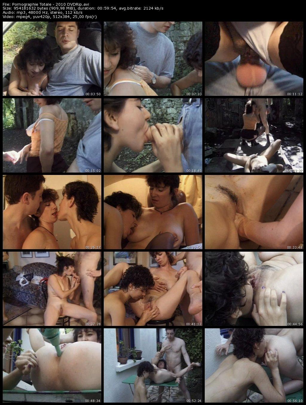 Pornographie Totale - 2010 DVDRip