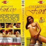 Champagne Fantasy – MFX (Darla, Camilly, Gaby and Melissa)