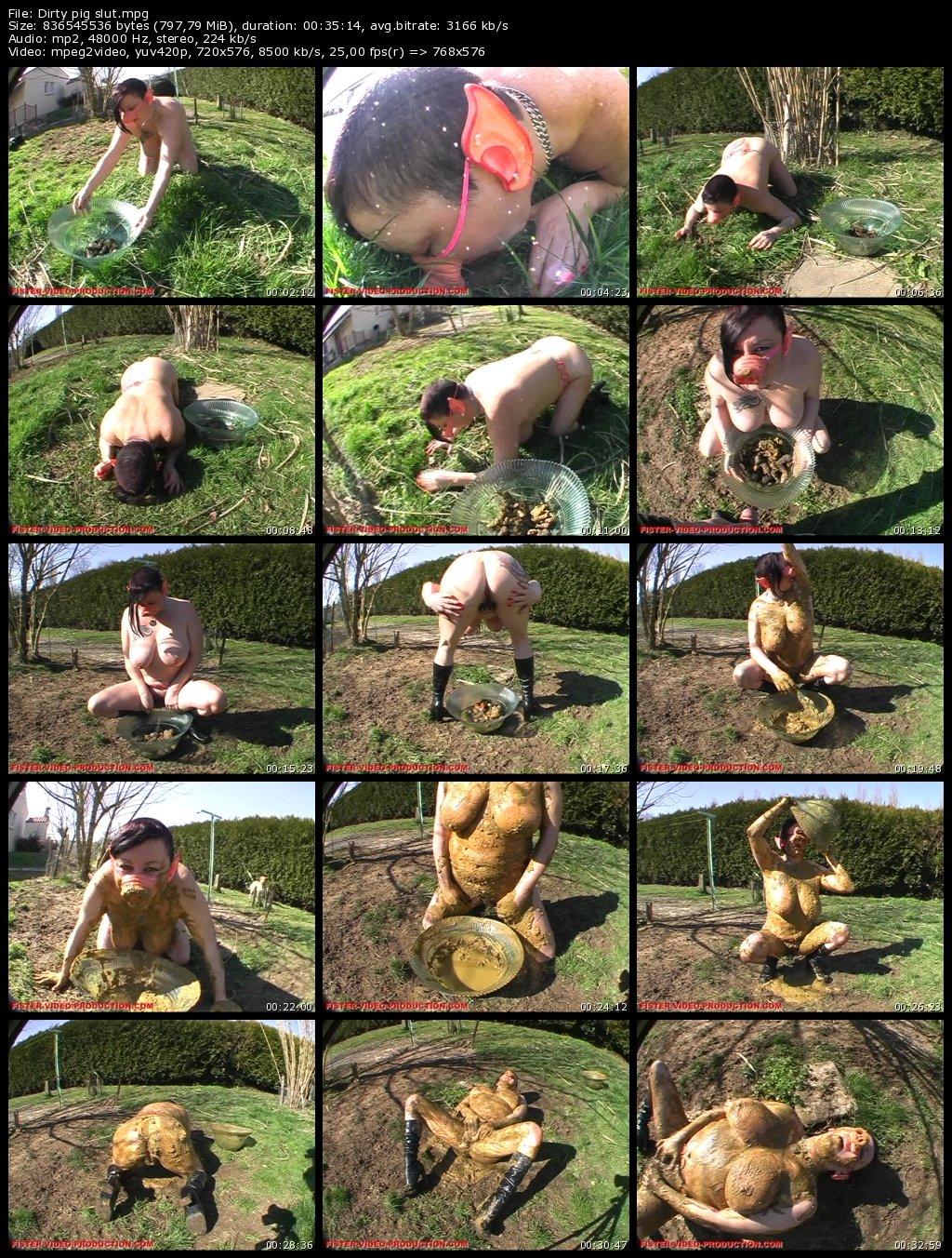 Fister Video Production - Dirty Pig Slut (Chienne Mary dans Sale cochonne )