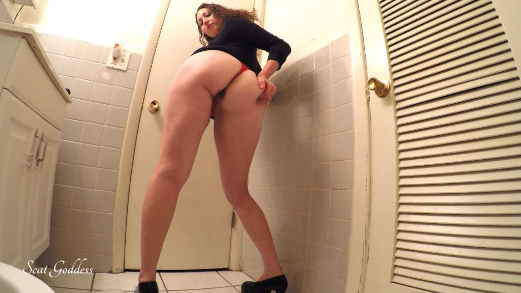 Scat Goddess Amanda - erotic pooping in bathroom - 2