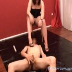 Hand selected scat videos collection – Part 18 (video-clips from 321 to 327)