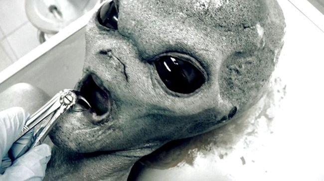 Roswel Ufo – Horror Porn Exclusive in 4k 3840×2160