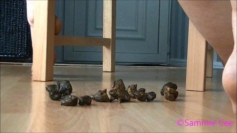 Sammie Cee – Pee & constipated poo on floor 16.03.2020