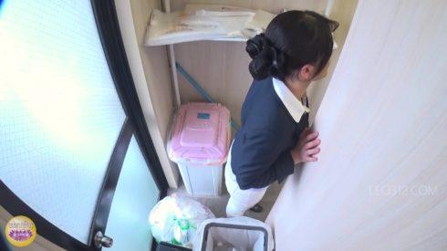 Japanese_Voyeur_Scat_-_SL-325-05.00003.jpg