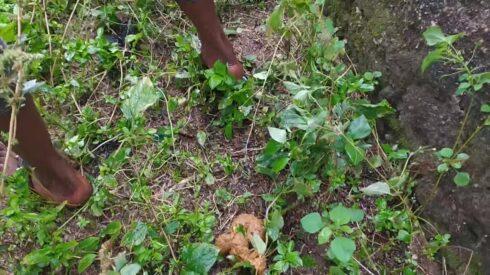 Pinky_Prada - Rainy Pooping Day In Nigeria 00003
